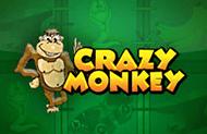 игровые автоматы Crazy Monkey - играйте на деньги