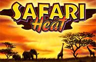 Играть на деньги в Safari Hea