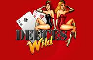 Игровой автомат на реальные деньги Deuces Wild
