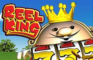 Играйте на деньги в игровом автомате Reel King